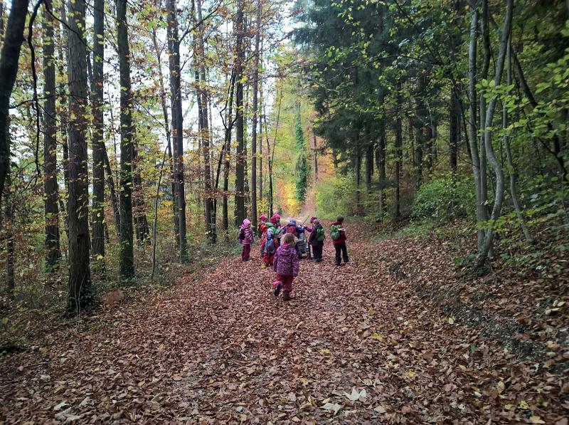 Auf dem Weg zum Waldsofaplatz