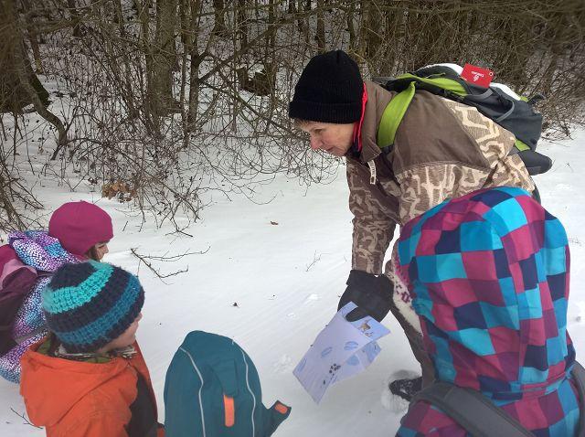 Spuren im Schnee suchen und erkennen.