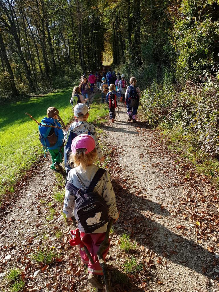 auf dem Weg zum Waldsofa