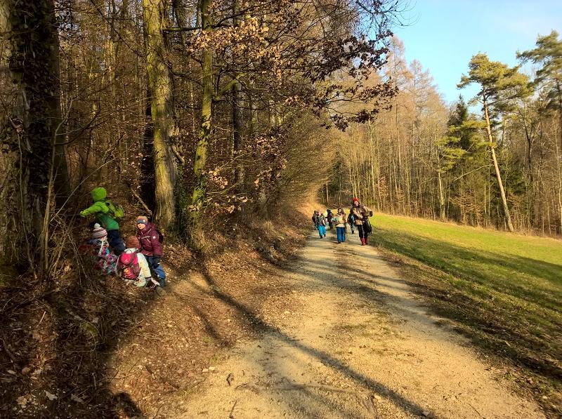 Auf dem Weg zum Waldsofa.