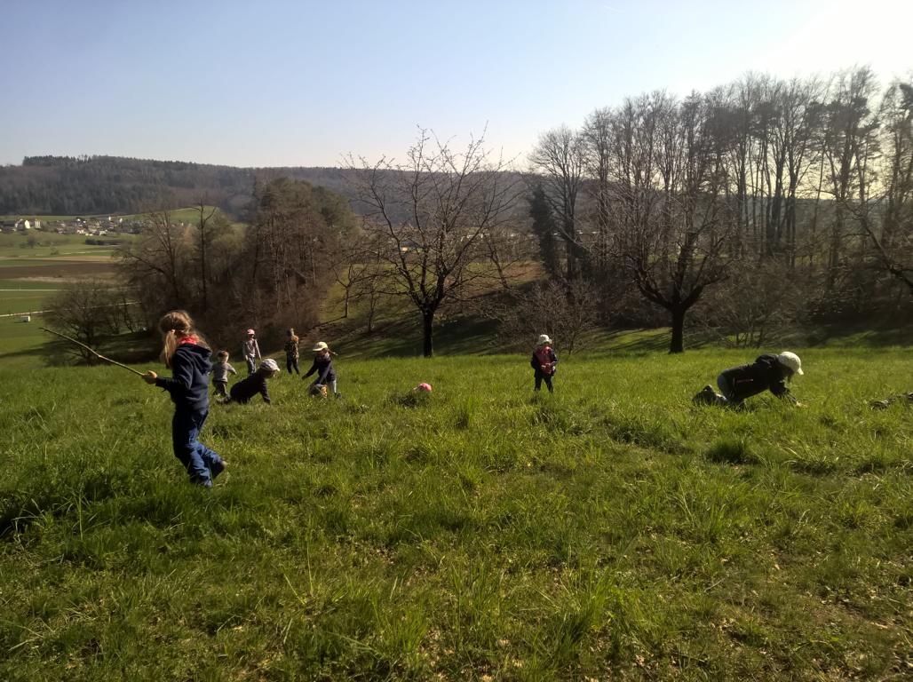 Auf der Suche nach essbaren Frühlingspflanzen