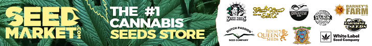 Graines de cannabis - SeedMarket.com