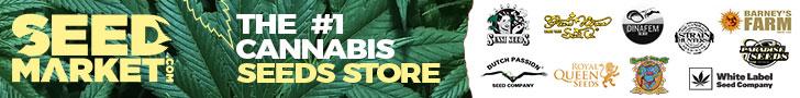 Acheter des graines de cannabis al ligne SeedMarket.com