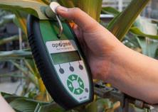 mesurer la cholrophylle contenue dans les plantes avec Agralis