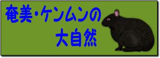 奄美・ケンムンの大自然