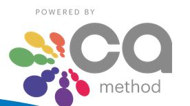 CA Methode: Color Association Method