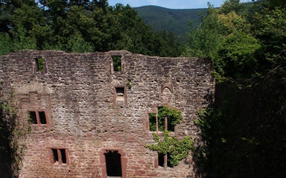 Die Burg Stolzeneck auf der anderen Neckarseite
