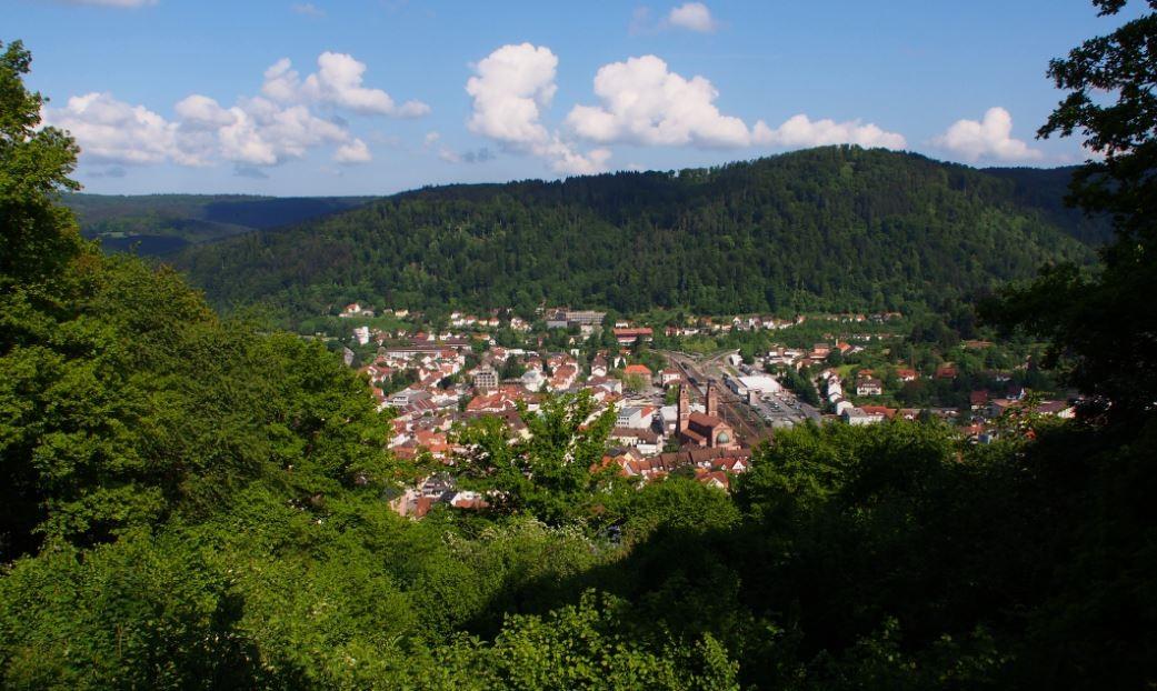 Eberbach im Sommer