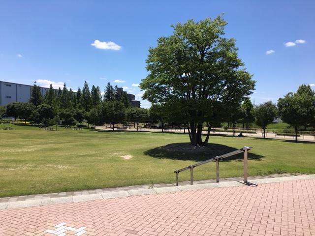 パークアリーナ小牧_ピクニック・芝生広場