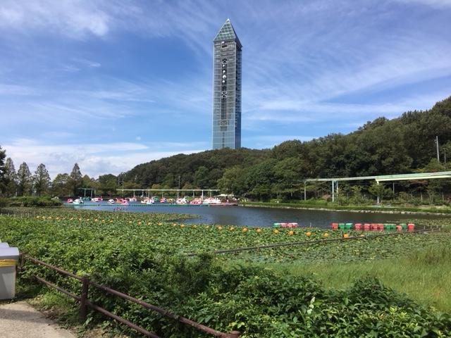 東山動植物園 紅葉