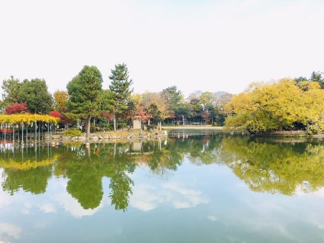天王川公園_ピクニック・芝生広場