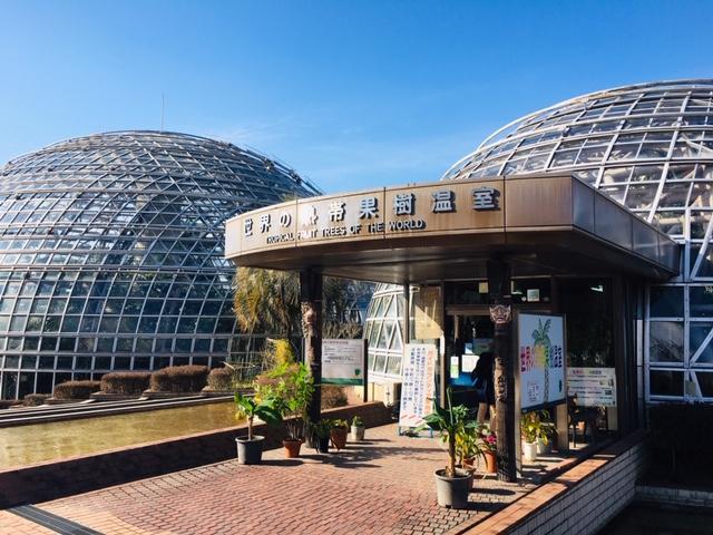 東谷山フルーツパーク_世界の熱帯果樹温室