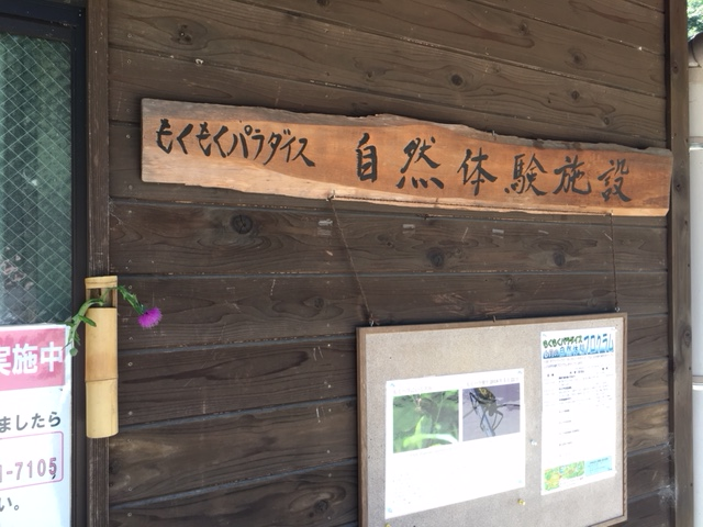 138タワーパーク_自然体験施設・もくもくパラダイス