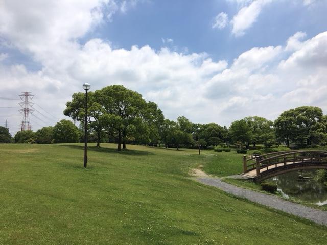 落合公園_ピクニック・芝生広場