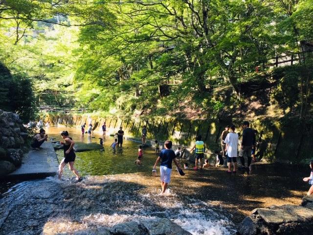 岩屋堂公園(愛知県瀬戸市)の利用料金は?
