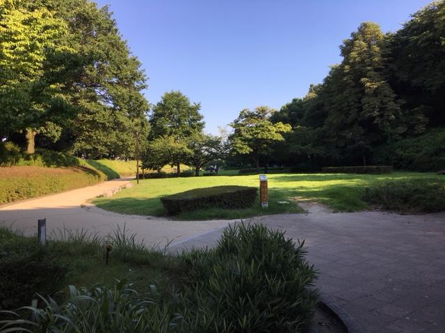 小牧山(小牧山城)_ピクニック・芝生広場