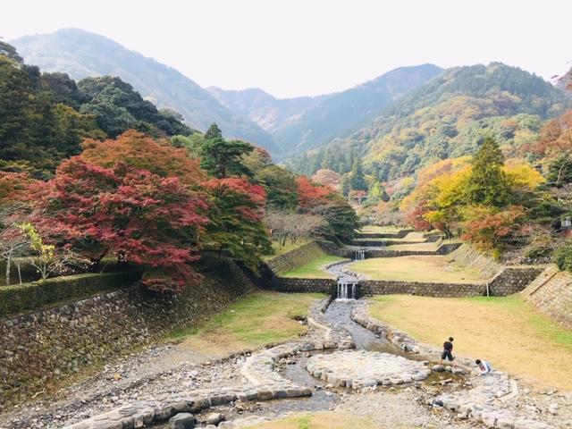 養老公園、養老の滝、紅葉