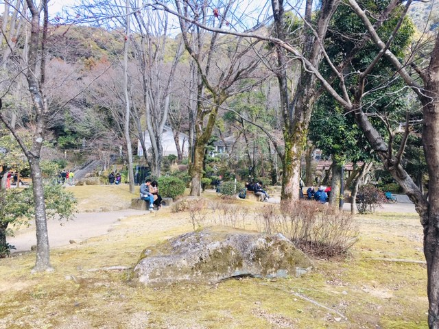 岐阜公園_ピクニック・芝生広場