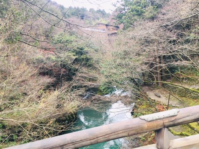 こおろぎ橋_渓谷②