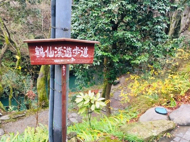 こおろぎ橋_鶴仙渓遊歩道