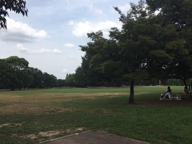 広大な芝生広場。ピクニックに最適!