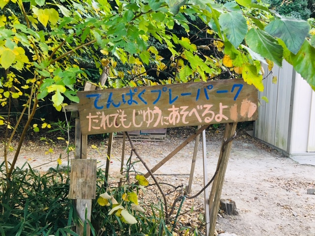 天白公園_プレーパーク