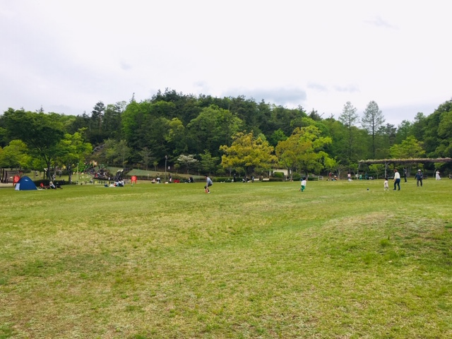 県営各務原公園_ピクニック・芝生広場