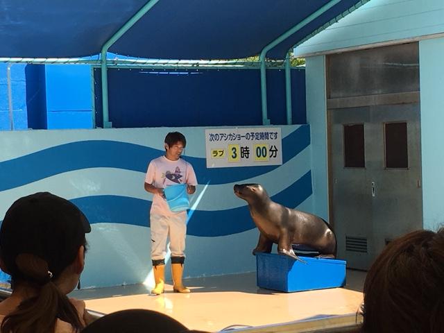 竹島水族館_アシカショー、カピパラショー