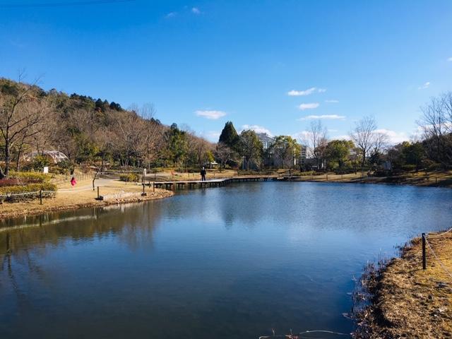 都市緑化植物園_プール・水遊び