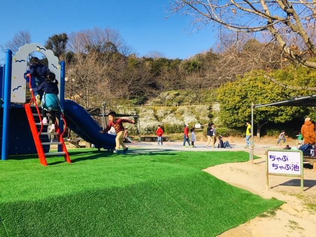 半田運動公園_プール・水遊び場