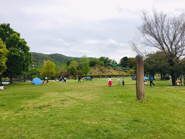 ひばりが丘公園_ピクニック・芝生広場