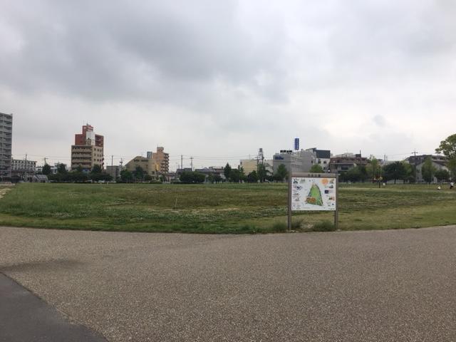 川名公園_ピクニック・芝生広場