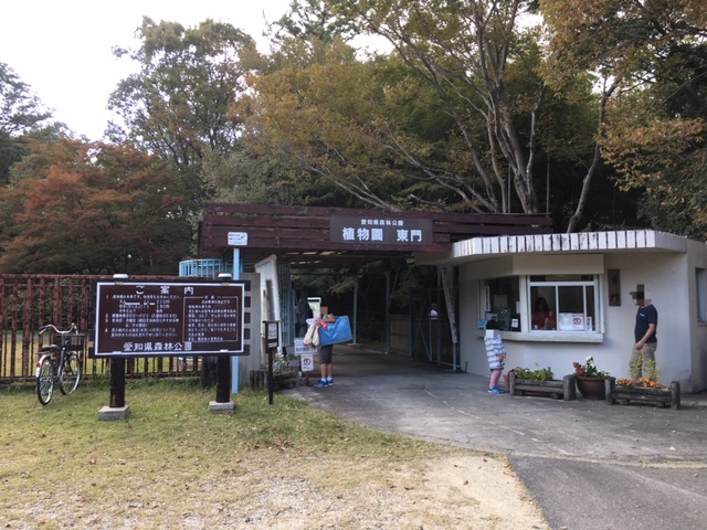 愛知県森林公園_季節の花・植物