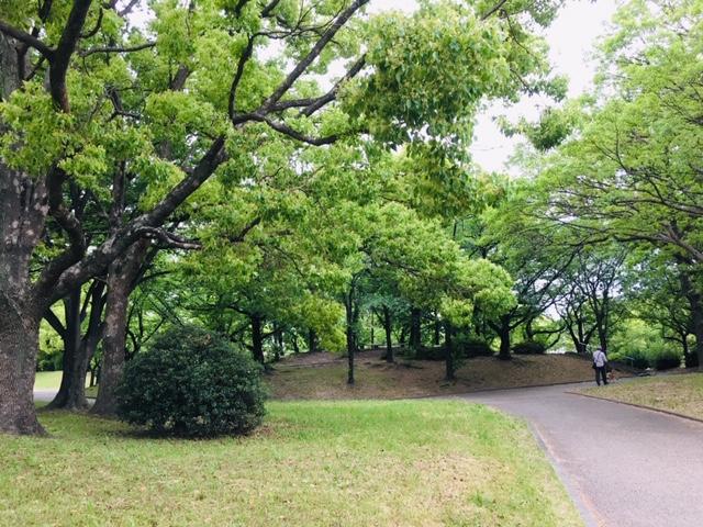 五町公園のピクニック・芝生広場