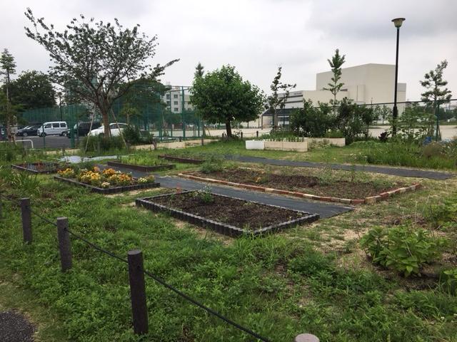 川名公園の季節の花・植物