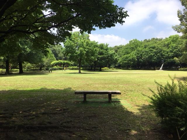朝宮公園_ピクニック・芝生広場