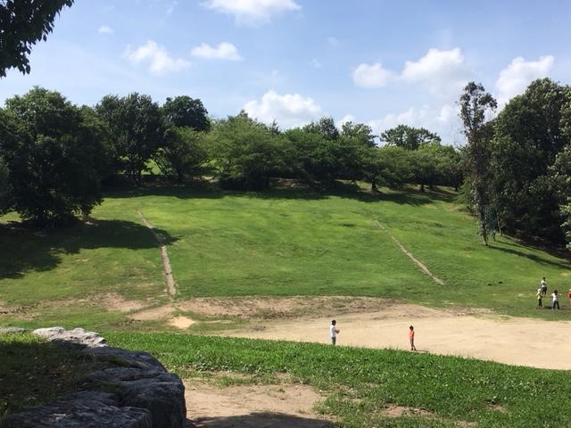 大高緑地_ピクニック(芝生広場)・若草山