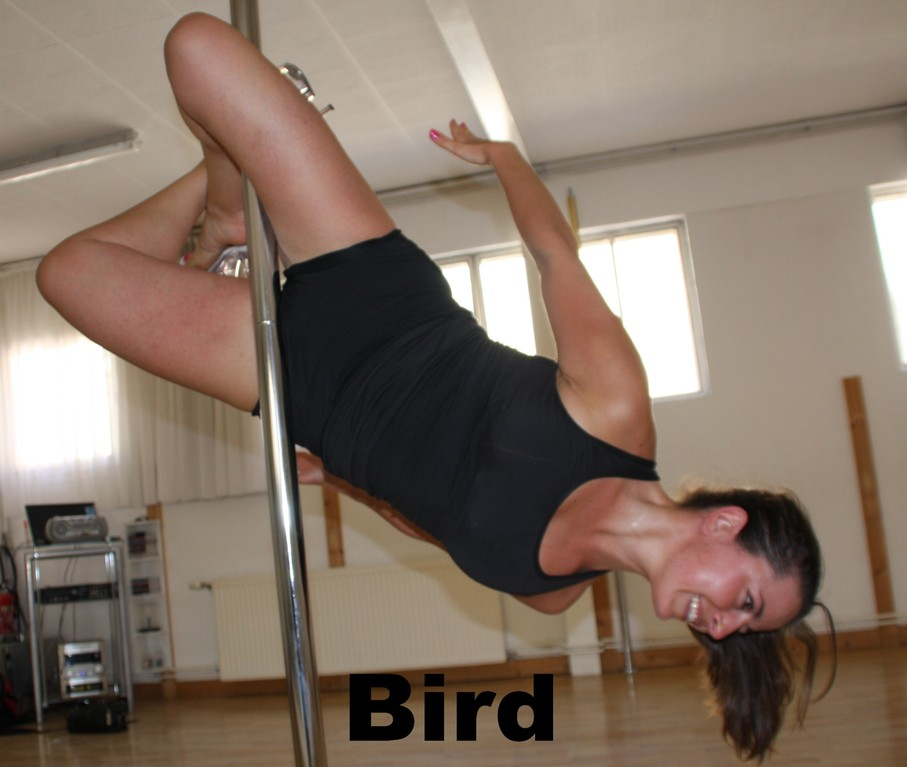 Bird / open marley variation / goddess