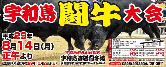 宇和島闘牛大会