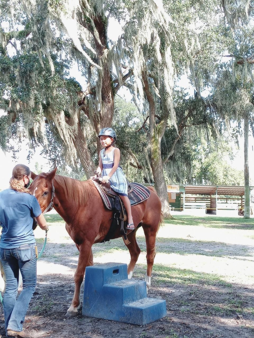 Horse Ride(馬乗り?)も体験できます🐎