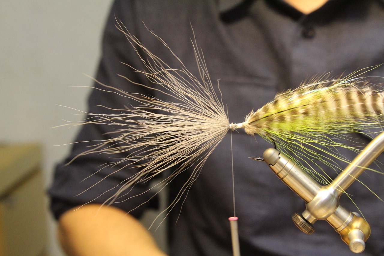 Tie in another bundle of bucktail, reverse style