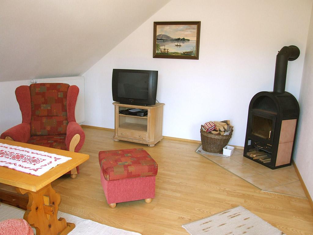 Schwedenofen im Wohnzimmer - machen Sie sich ein gemütliches Feuer, gerade in der Übergangszeit oder im Ihrem Winterurlaub in Seehausen!