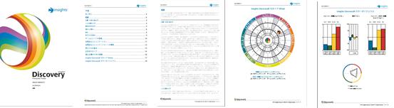Insights® Discovery パーソナル・プロファイルのイメージ画像
