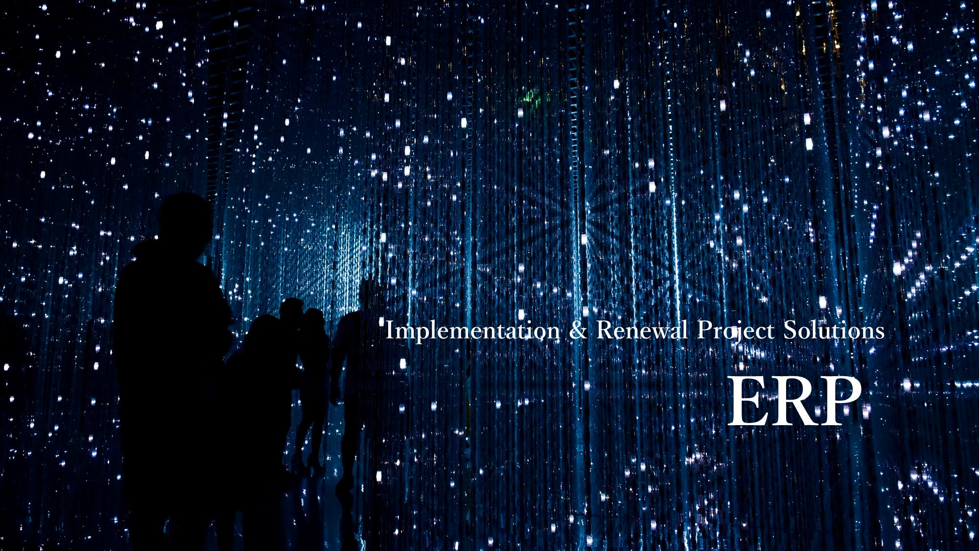 ERP導入(刷新)プロジェクト・ソリューションのイメージ画像