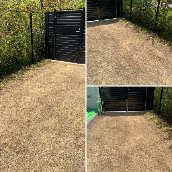 マンション専用庭の芝の芝刈り作業