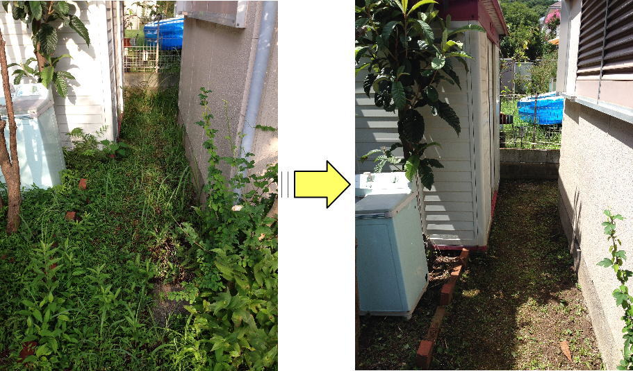 横浜市個人邸の草むしり作業依頼