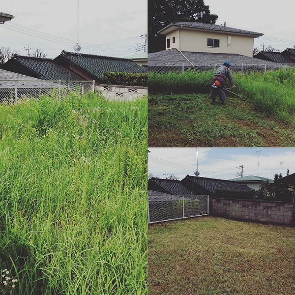空き地の草刈り作業