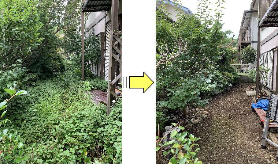 お庭全体ドクダミに覆われてしまった個人邸草刈り作業