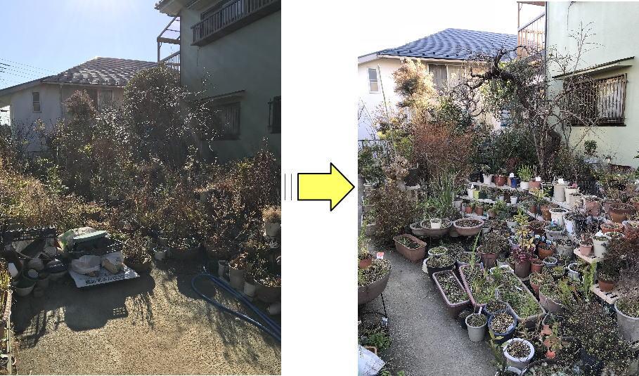 藤沢市個人邸お庭の草むしり作業 鉢物の草むしり作業