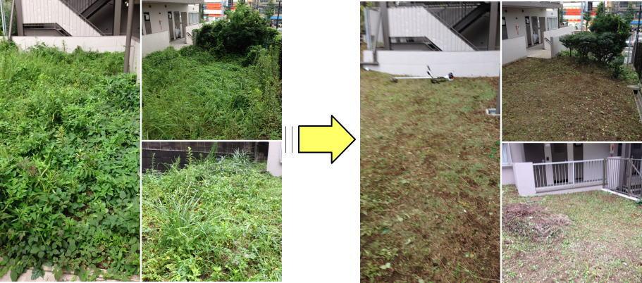 マンション外回りの草刈り作業ご依頼 マンション年間管理請負